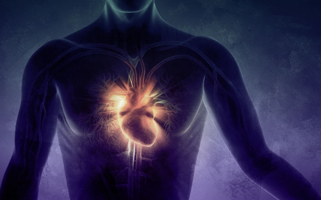 Signs of a Successful Initiation of the Heart